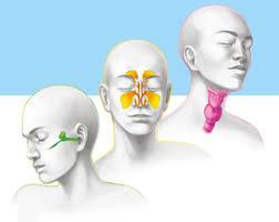 Cách phòng ngừa các bệnh tai mũi họng hiệu quả vào mùa hè